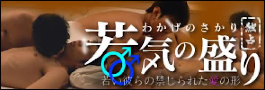 ゲイ 肉棒 動画|独占!「若気の盛り」|チンコ